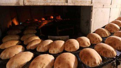 صورة سعر ربطة الخبز فوق الخيال… وابراهيم يوضح
